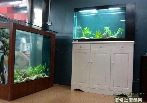 家用鱼缸尺寸多少合适?摆放位置有哪些讲究?